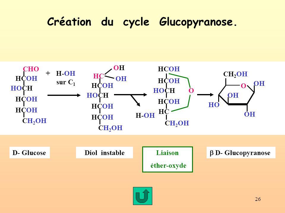 26 Création du cycle Glucopyranose. D- GlucoseDiol instable Liaison éther-oxyde D- Glucopyranose CHO HCOH CH 2 OH HCOH HOCH + H-OH sur C 1 OH OHOH HC