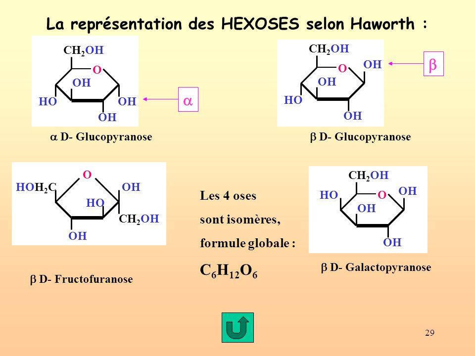 29 La représentation des HEXOSES selon Haworth : OH CH 2 OH O OH HO OH CH 2 OH O OH HOOH D- Glucopyranose HO HOH 2 C O OH CH 2 OH D- Fructofuranose D- Glucopyranose OH CH 2 OH O OH HO OH D- Galactopyranose Les 4 oses sont isomères, formule globale : C 6 H 12 O 6