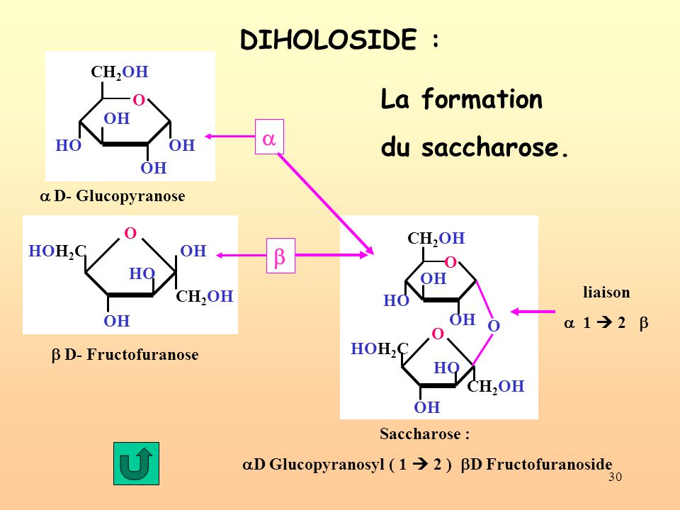 30 DIHOLOSIDE : OH CH 2 OH O OH HOOH D- Glucopyranose HO HOH 2 C O OH CH 2 OH D- Fructofuranose Saccharose : D Glucopyranosyl ( 1 2 ) D Fructofuranosi