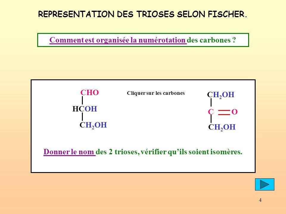 4 REPRESENTATION DES TRIOSES SELON FISCHER. Comment est organisée la numérotation Comment est organisée la numérotation des carbones ? CHO HCOH CH 2 O