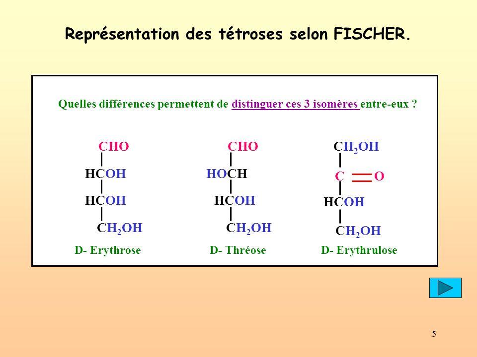 5 Représentation des tétroses selon FISCHER. CHO HCOH CH 2 OH HCOH CHO HOCH CH 2 OH HCOH D- ErythroseD- ThréoseD- Erythrulose CH 2 OH C O CH 2 OH HCOH