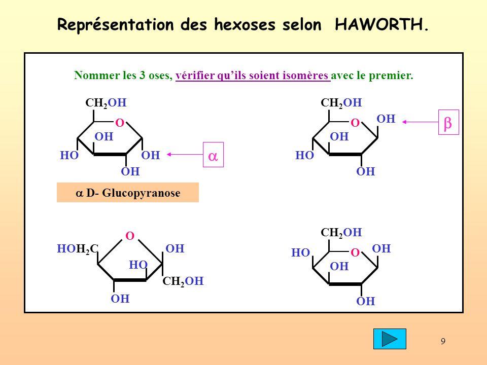 30 DIHOLOSIDE : OH CH 2 OH O OH HOOH D- Glucopyranose HO HOH 2 C O OH CH 2 OH D- Fructofuranose Saccharose : D Glucopyranosyl ( 1 2 ) D Fructofuranoside OH CH 2 OH O OH HO HOH 2 C O OH O CH 2 OH liaison 1 2 La formation du saccharose.