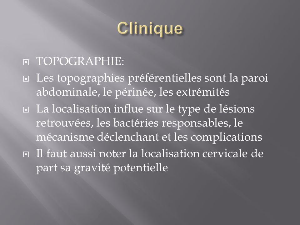 TOPOGRAPHIE: Les topographies préférentielles sont la paroi abdominale, le périnée, les extrémités La localisation influe sur le type de lésions retro