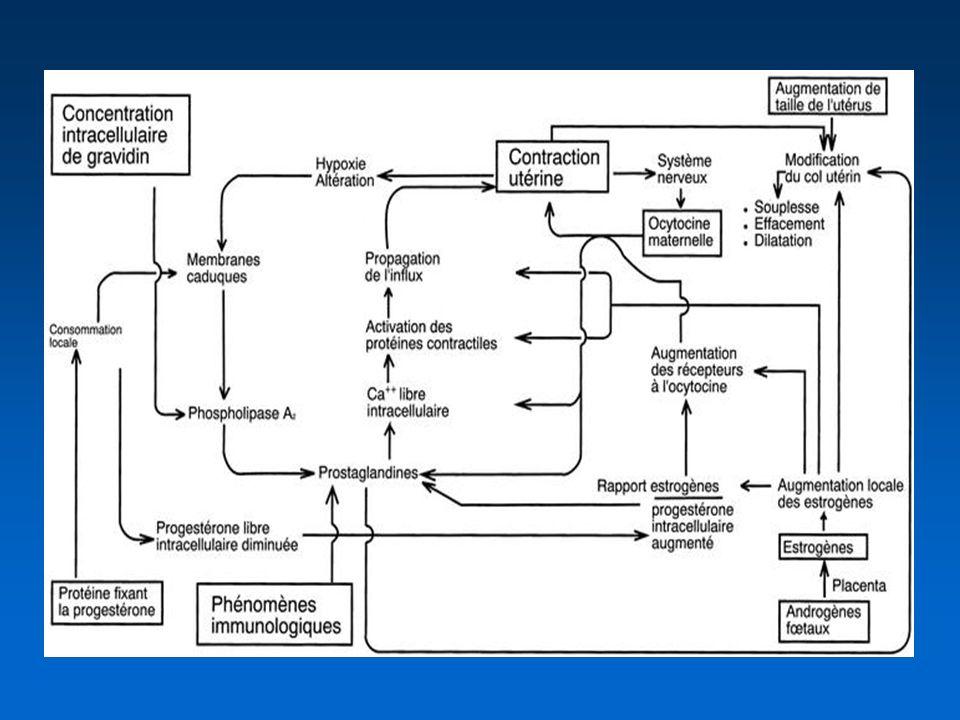 Direction active « préventive » par rupture précoce des membranes 9 études randomisées Amniotomie précoce versus conservation des membranes diminution de la durée du travail (60-120 min) tendance à laugmentation des césariennes (principalement pour altération du RCF) (OR=1,26[0,96-1,66]) réduction des scores dApgar < 7 à 5 min Fraser.Cochrane 2000