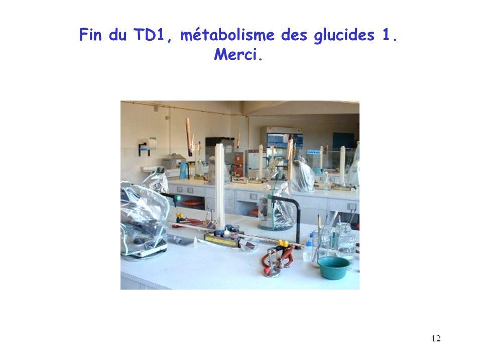 12 Fin du TD1, métabolisme des glucides 1. Merci.