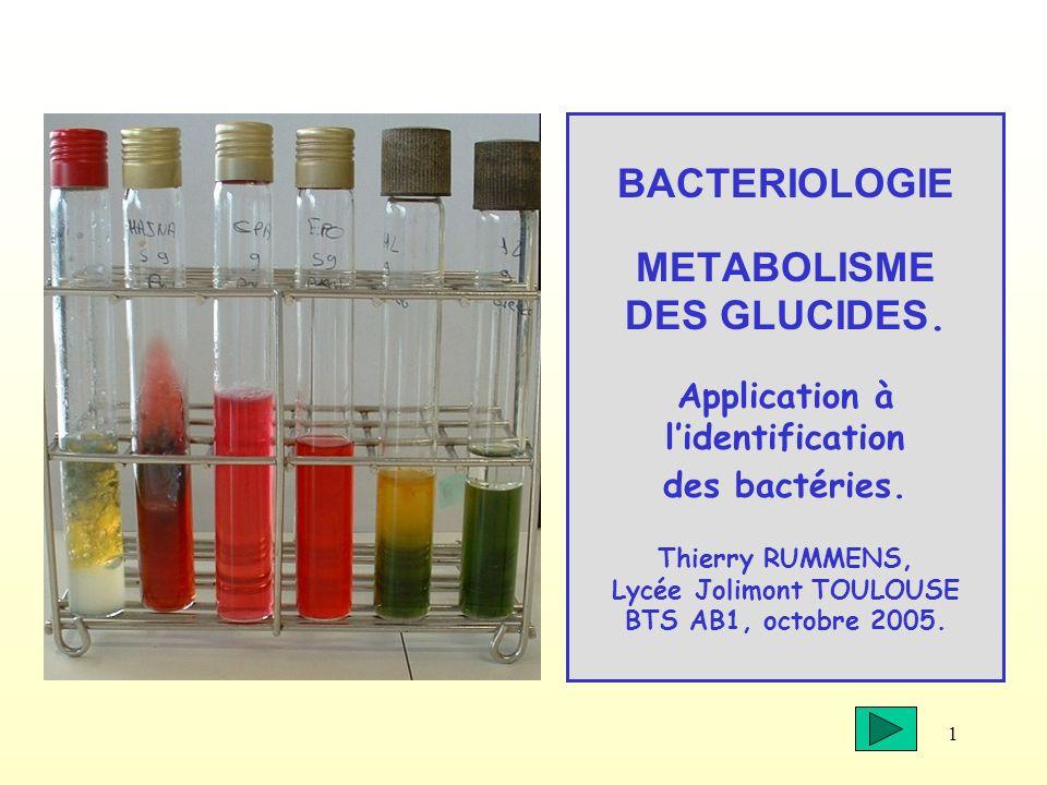 1 BACTERIOLOGIE METABOLISME DES GLUCIDES. Application à lidentification des bactéries. Thierry RUMMENS, Lycée Jolimont TOULOUSE BTS AB1, octobre 2005.