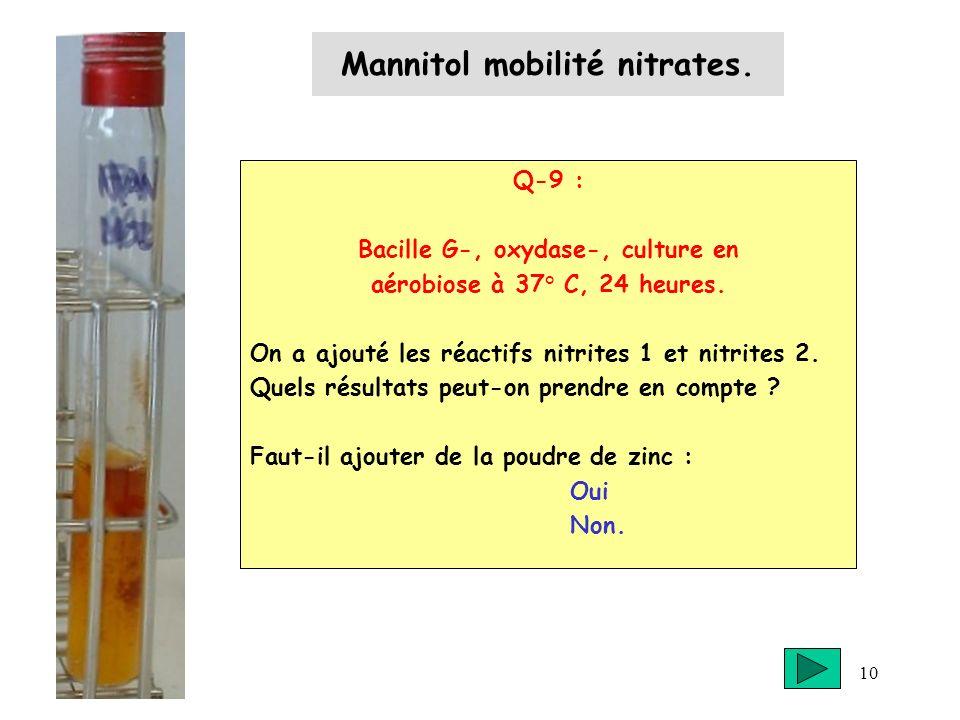 10 Mannitol mobilité nitrates. Q-9 : Bacille G-, oxydase-, culture en aérobiose à 37° C, 24 heures. On a ajouté les réactifs nitrites 1 et nitrites 2.