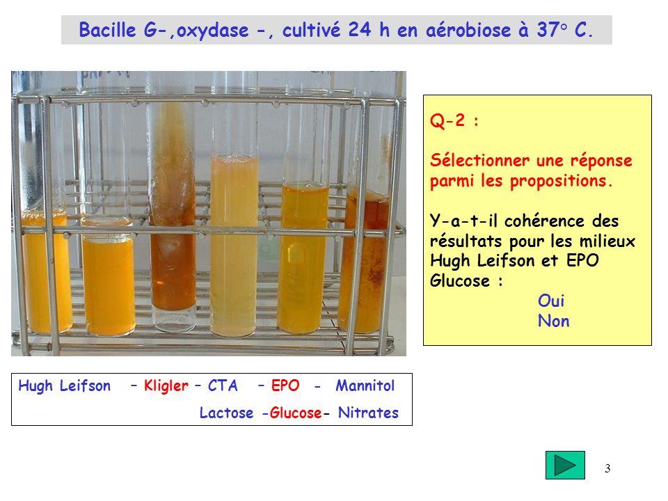 3 Q-2 : Sélectionner une réponse parmi les propositions. Y-a-t-il cohérence des résultats pour les milieux Hugh Leifson et EPO Glucose : Oui Non Hugh