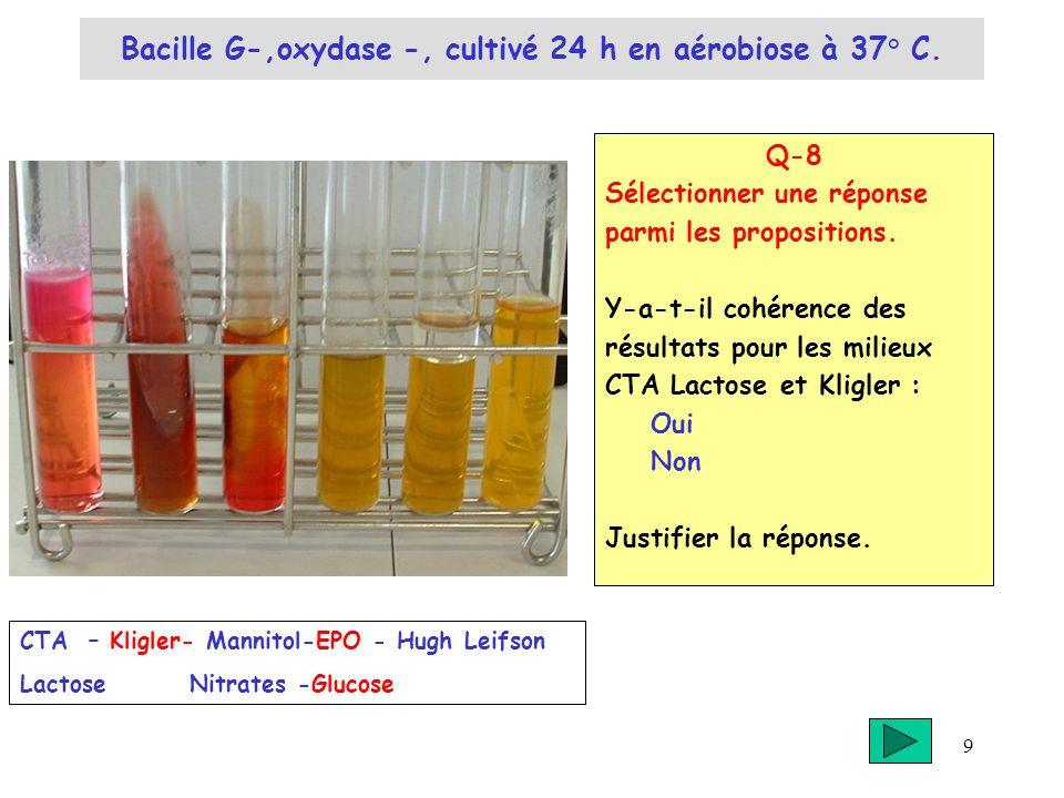 9 Bacille G-,oxydase -, cultivé 24 h en aérobiose à 37° C. Q-8 Sélectionner une réponse parmi les propositions. Y-a-t-il cohérence des résultats pour