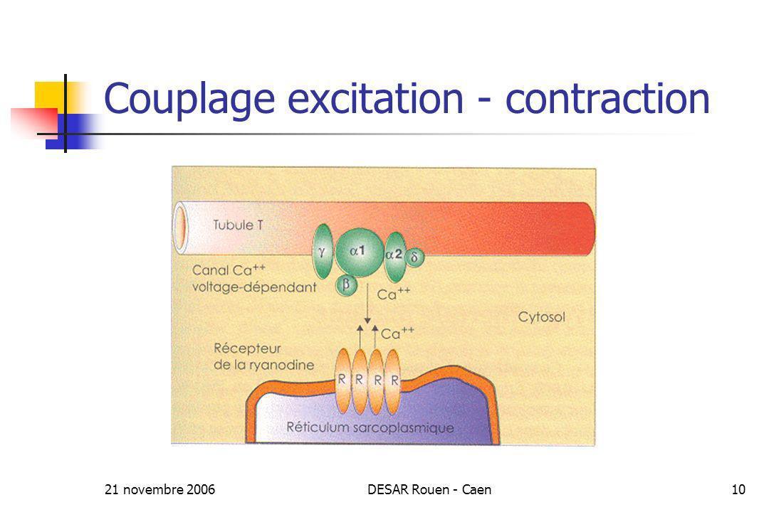 21 novembre 2006DESAR Rouen - Caen10 Couplage excitation - contraction