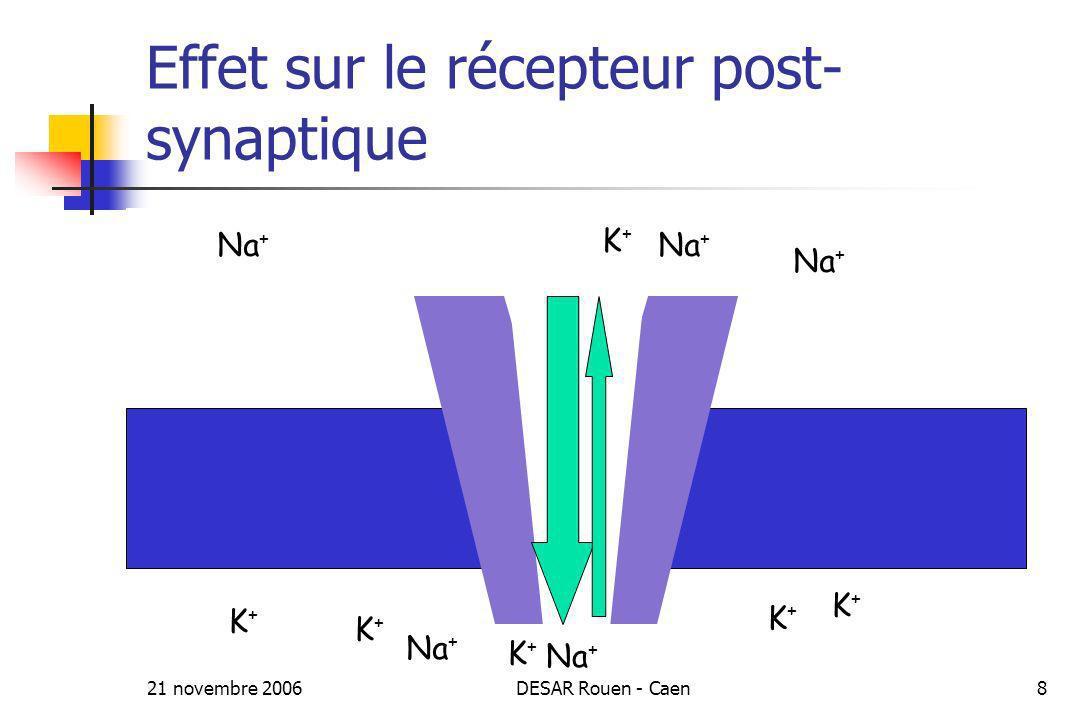 21 novembre 2006DESAR Rouen - Caen8 Effet sur le récepteur post- synaptique Na + K+K+ K+K+ K+K+ K+K+ K+K+ K+K+ K+K+