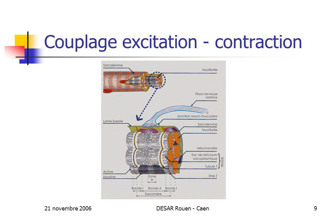 21 novembre 2006DESAR Rouen - Caen9 Couplage excitation - contraction