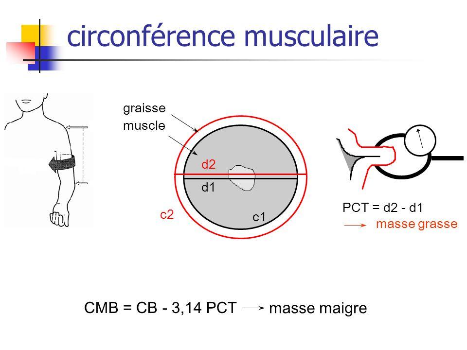 circonférence musculaire d2 d1 c2 graisse muscle c1 PCT = d2 - d1 CMB = CB - 3,14 PCT masse grasse masse maigre