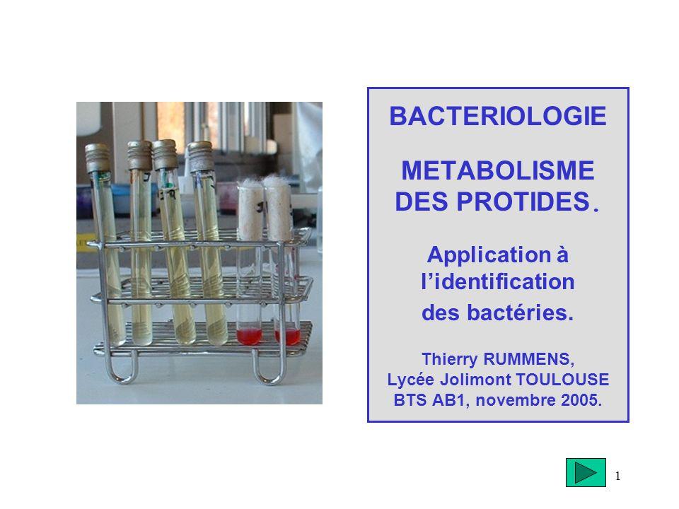 1 BACTERIOLOGIE METABOLISME DES PROTIDES. Application à lidentification des bactéries. Thierry RUMMENS, Lycée Jolimont TOULOUSE BTS AB1, novembre 2005