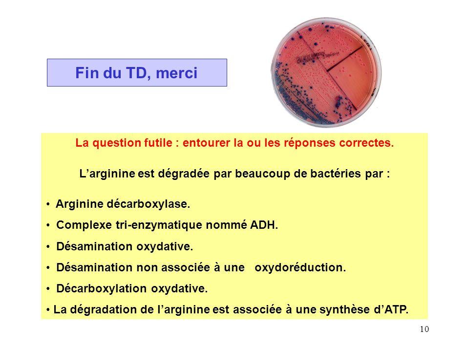 10 Fin du TD, merci La question futile : entourer la ou les réponses correctes. Larginine est dégradée par beaucoup de bactéries par : Arginine décarb