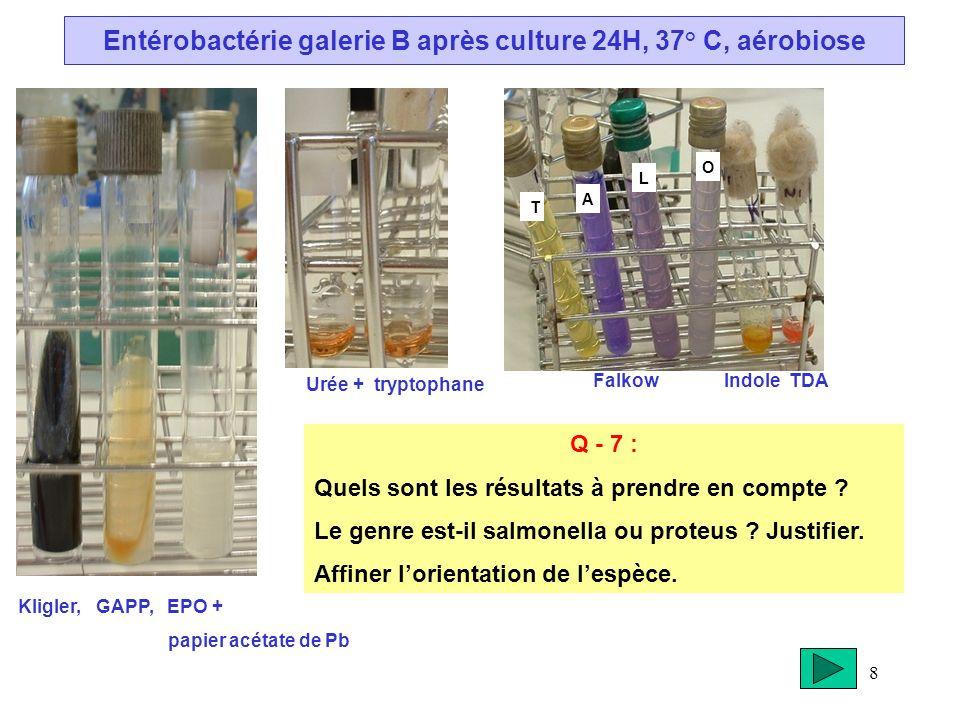 8 Entérobactérie galerie B après culture 24H, 37° C, aérobiose Kligler, GAPP, EPO + papier acétate de Pb Urée + tryptophane Q - 7 : Quels sont les rés