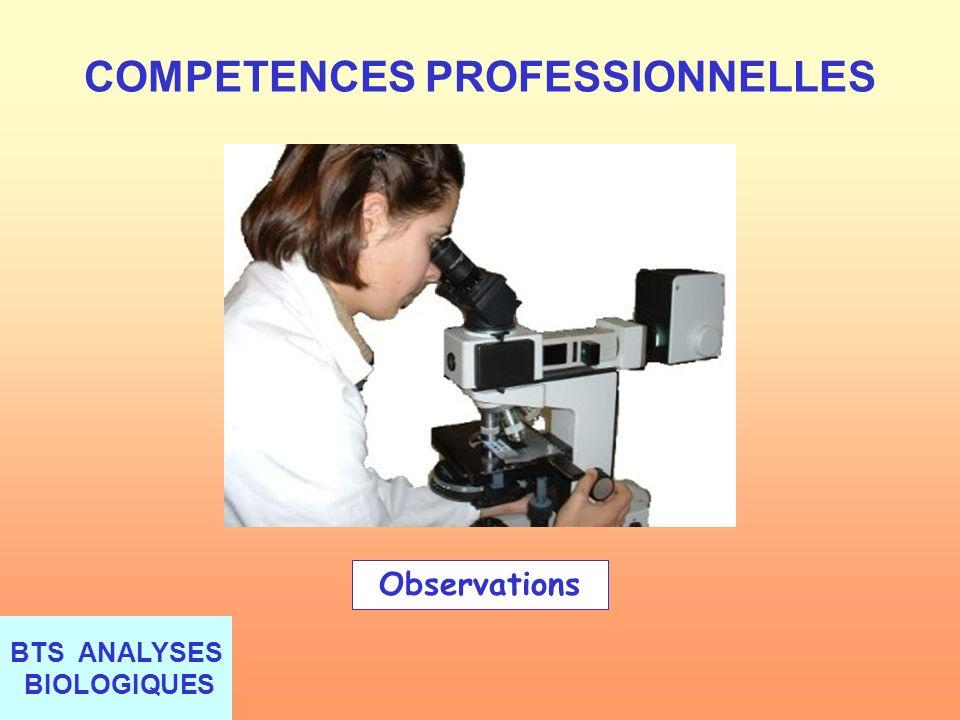 BTS ANALYSES BIOLOGIQUES COMPETENCES PROFESSIONNELLES Observations
