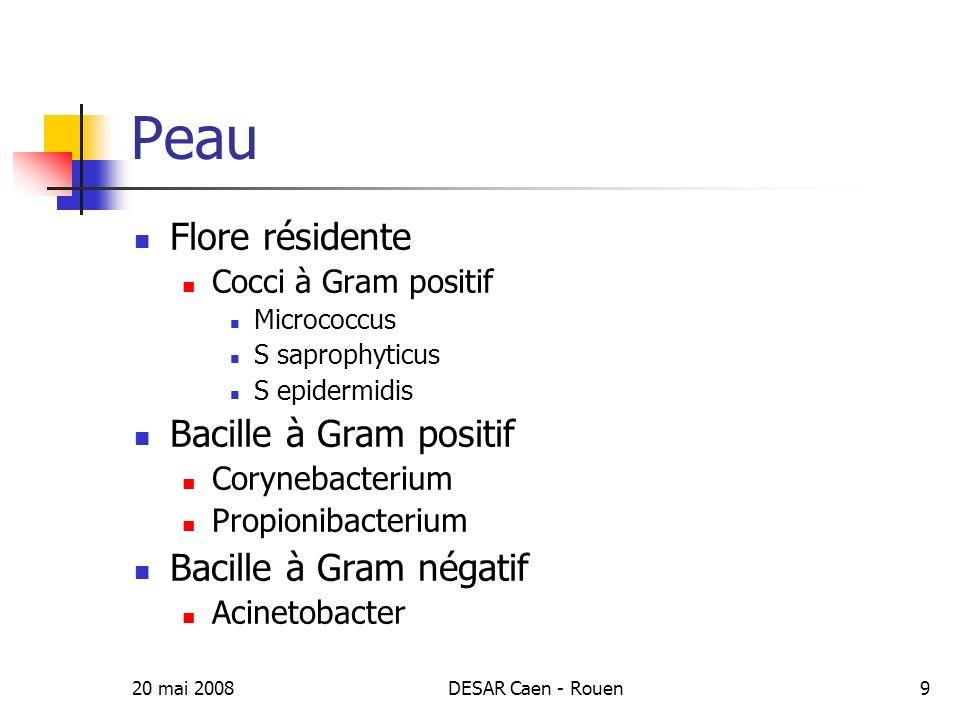 20 mai 2008DESAR Caen - Rouen10 Estomac 10 1 - 10 3 ufc/mL Aérobies Cocci Entérobactéries
