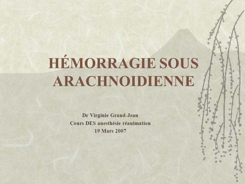 HÉMORRAGIE SOUS ARACHNOIDIENNE Dr Virginie Grand-Jean Cours DES anesthésie réanimation 19 Mars 2007