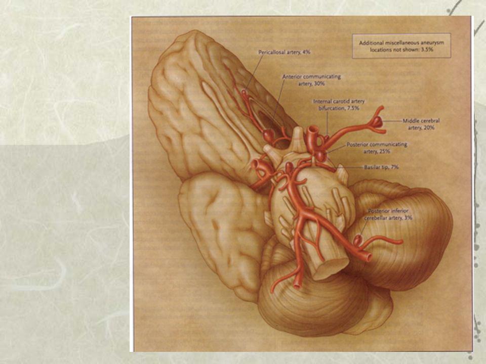 Incidence selon localisation Carotide interne et communicante postérieure: 30- 40 % Communicante antérieure: 25-30 % Cérébrale moyenne: 20-25 % Tronc basilaire: 5-9 % Péricalleuse: 4% PICA: 4% Autres 4%