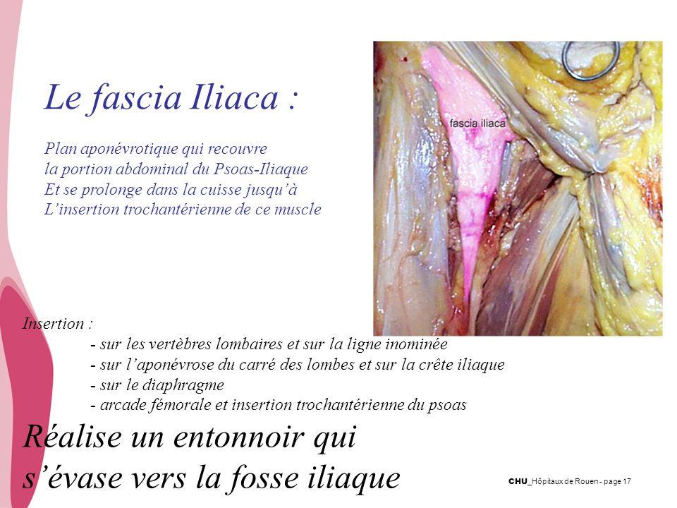 CHU _Hôpitaux de Rouen - page 17 Le fascia Iliaca : Plan aponévrotique qui recouvre la portion abdominal du Psoas-Iliaque Et se prolonge dans la cuiss