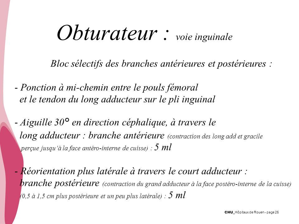 CHU _Hôpitaux de Rouen - page 25 Obturateur : voie inguinale Bloc sélectifs des branches antérieures et postérieures : - Ponction à mi-chemin entre le