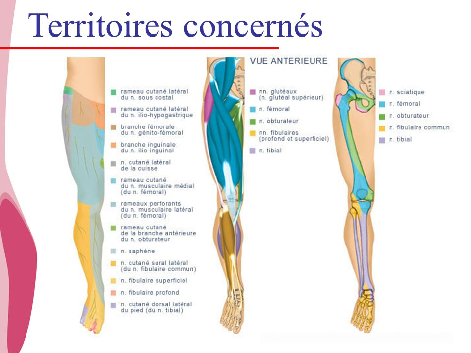 CHU _Hôpitaux de Rouen - page 4 Territoires concernés