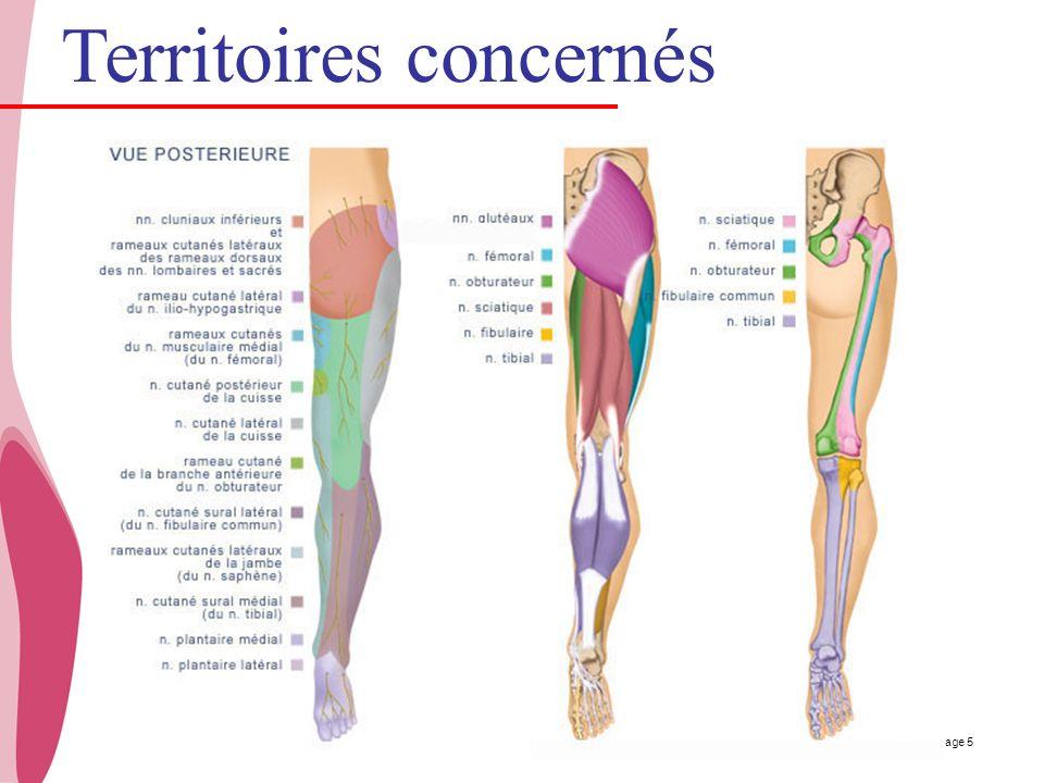 CHU _Hôpitaux de Rouen - page 5 Territoires concernés