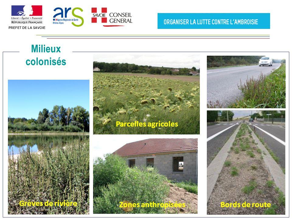 La surveillance des pollens de lAmbroisie PREFET DE LA SAVOIE