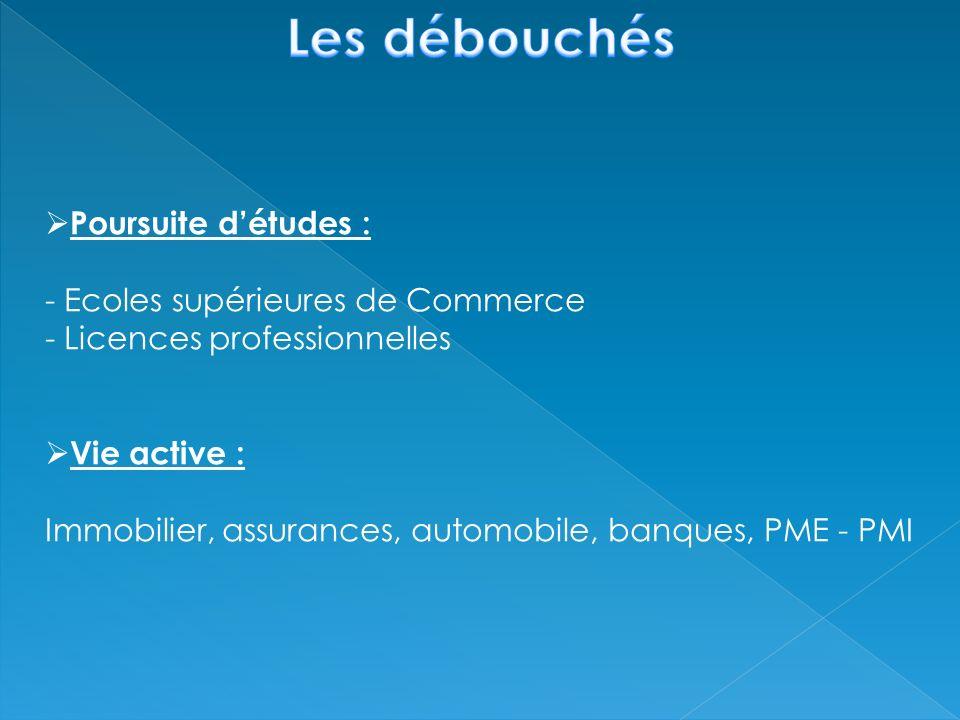 Poursuite détudes : - Ecoles supérieures de Commerce - Licences professionnelles Vie active : Immobilier, assurances, automobile, banques, PME - PMI