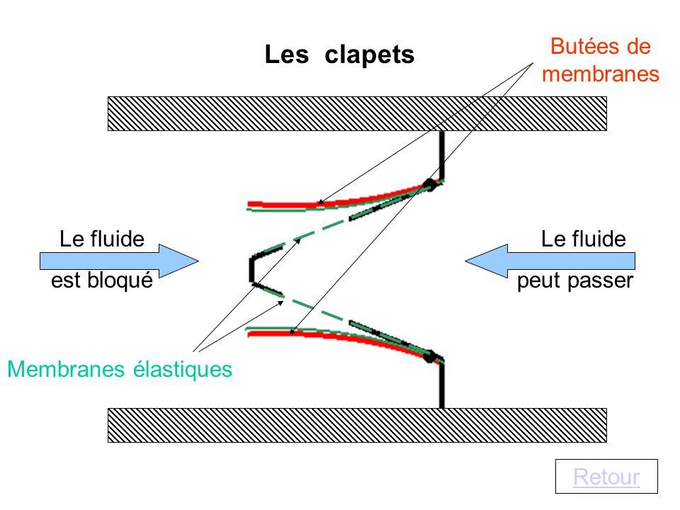 Butées de membranes Les clapets Membranes élastiques Le fluide peut passer Le fluide est bloqué Retour
