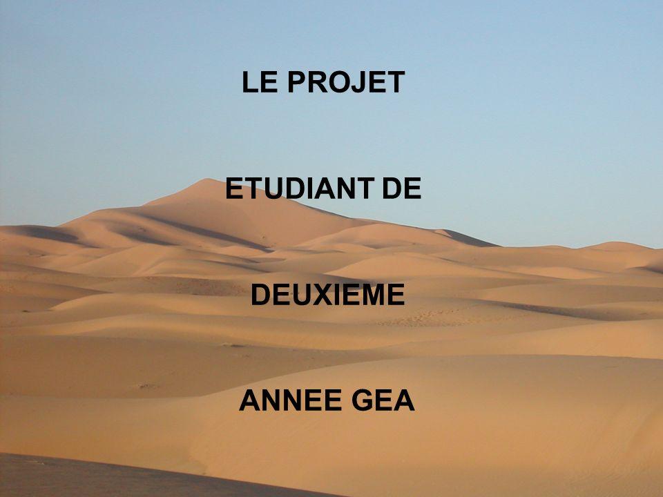 LE PROJET ETUDIANT DE DEUXIEME ANNEE GEA