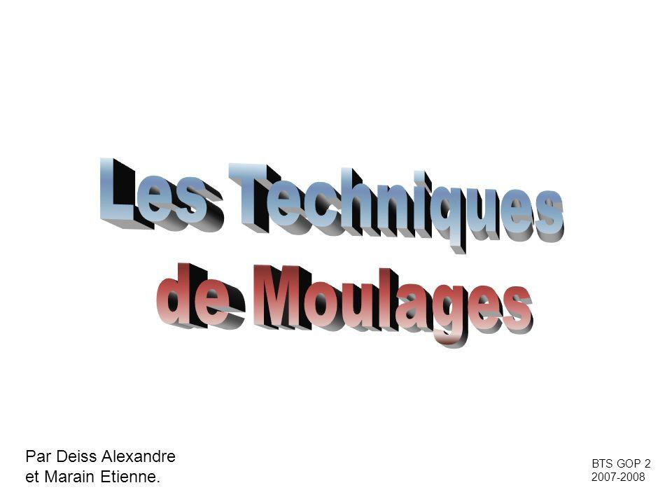 Par Deiss Alexandre et Marain Etienne. BTS GOP 2 2007-2008