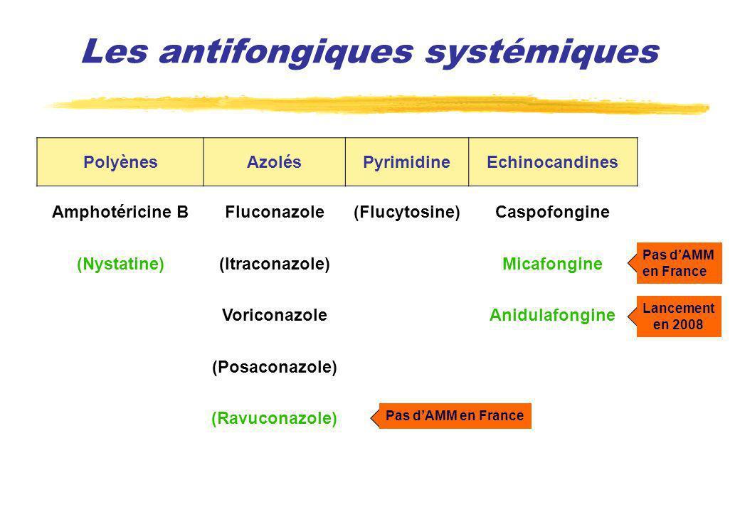 PolyènesAzolésPyrimidineEchinocandines Amphotéricine BFluconazole(Flucytosine)Caspofongine (Nystatine)(Itraconazole)Micafongine VoriconazoleAnidulafon