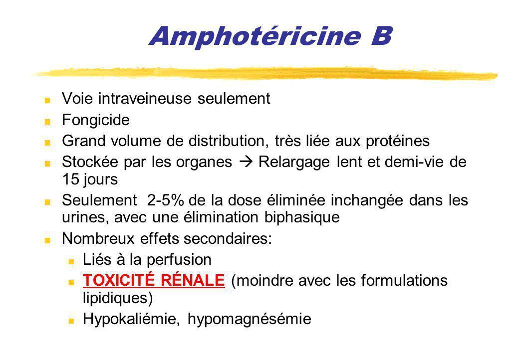 Amphotéricine B Voie intraveineuse seulement Fongicide Grand volume de distribution, très liée aux protéines Stockée par les organes Relargage lent et