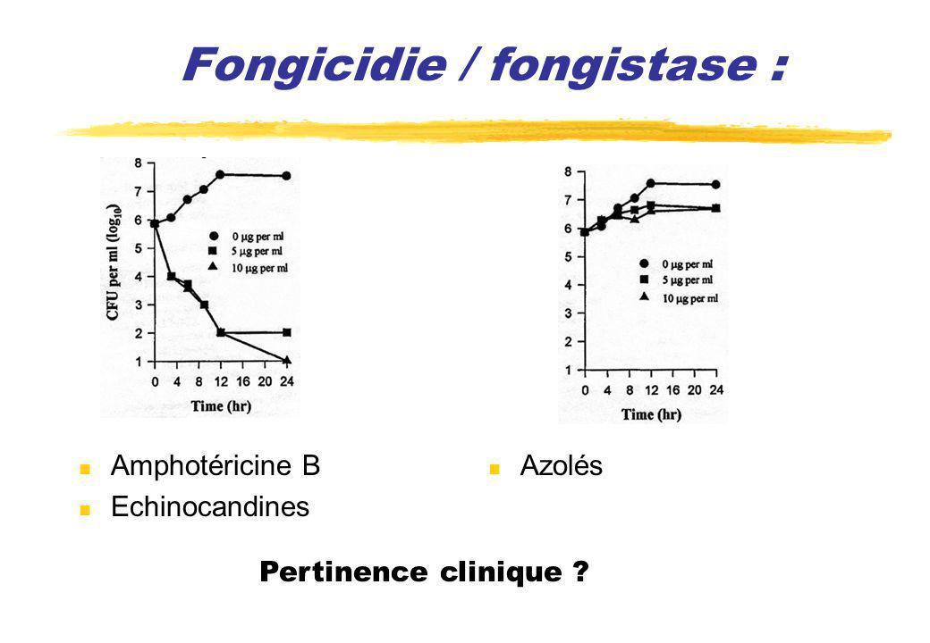Fongicidie / fongistase : Amphotéricine B Echinocandines Azolés Pertinence clinique ?