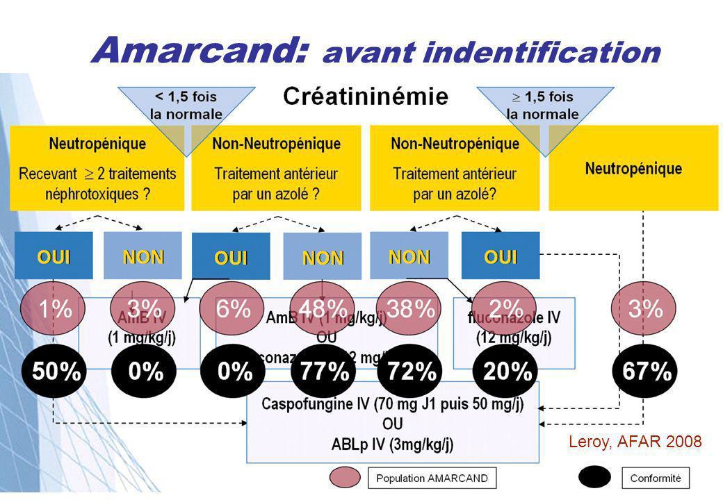 Amarcand: avant indentification Leroy, AFAR 2008