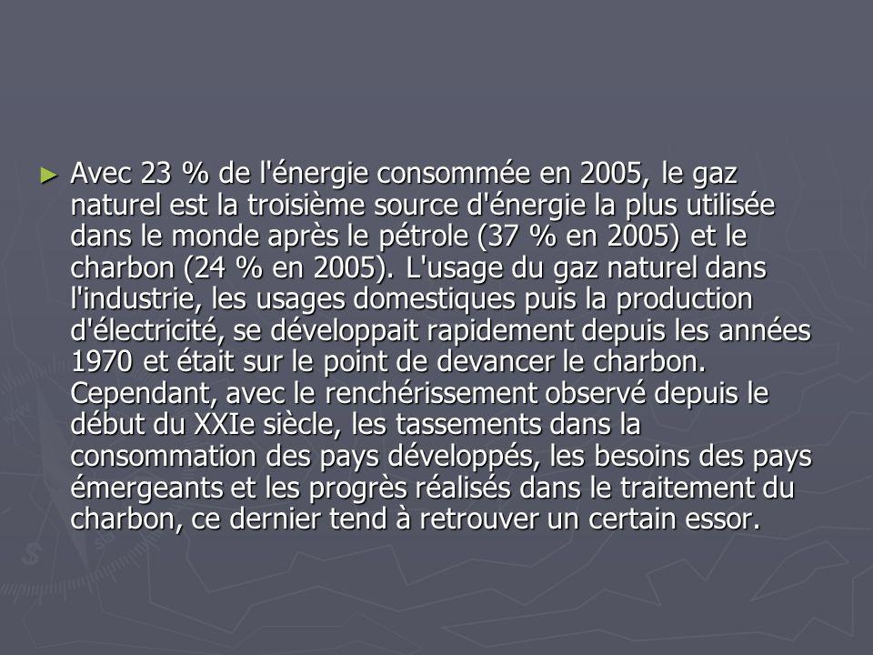 Avec 23 % de l'énergie consommée en 2005, le gaz naturel est la troisième source d'énergie la plus utilisée dans le monde après le pétrole (37 % en 20