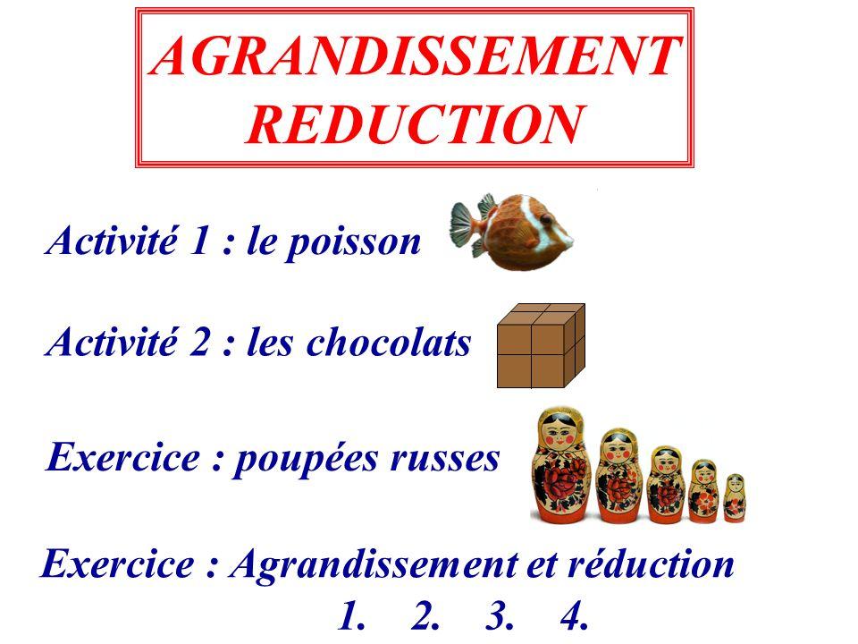 Exercice : poupées russes Activité 1 : le poisson Activité 2 : les chocolats AGRANDISSEMENT REDUCTION Exercice : Agrandissement et réduction 1.2.3.4.
