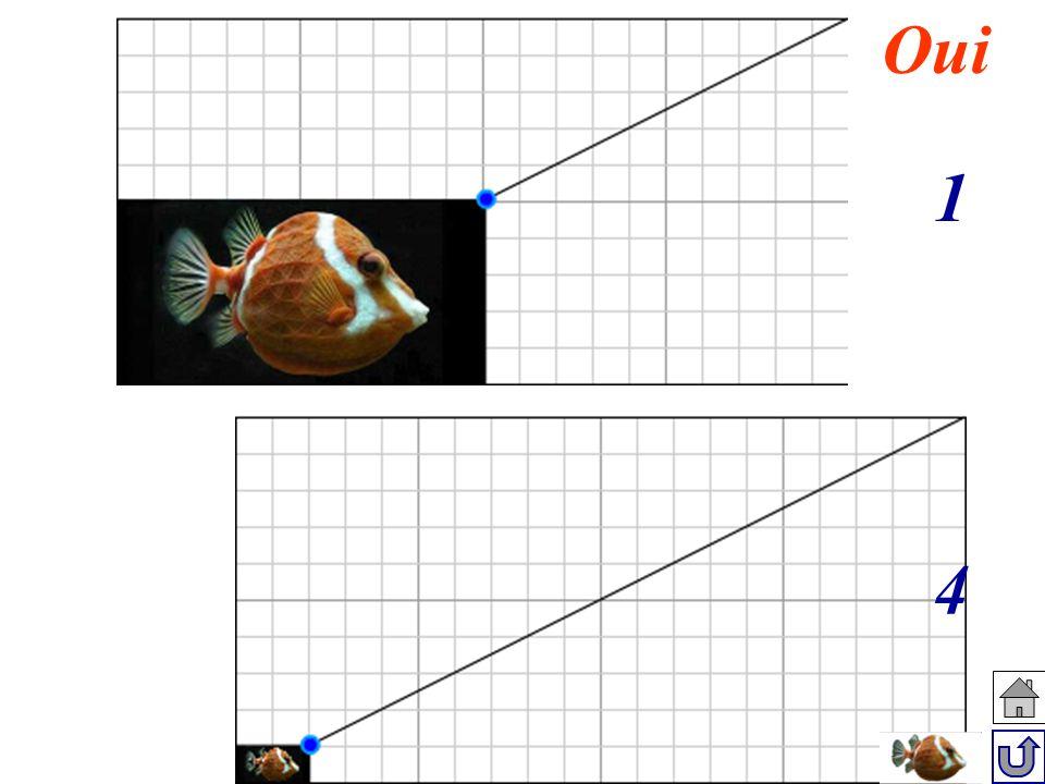 Situation 1 à la situation 3 : L aire est multipliée par Aire (situation 3) Aire (situation 1) La longueur et la largeur sont multipliées par 3 2 200 carreaux 50 carreaux 4