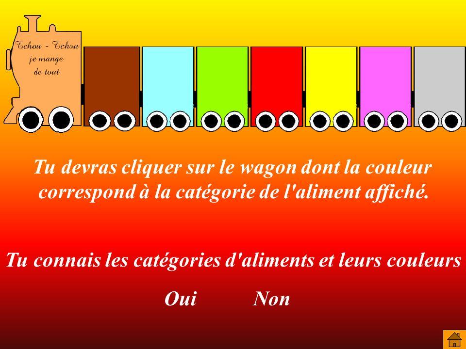 Tu devras cliquer sur le wagon dont la couleur correspond à la catégorie de l'aliment affiché. Tu connais les catégories d'aliments et leurs couleurs