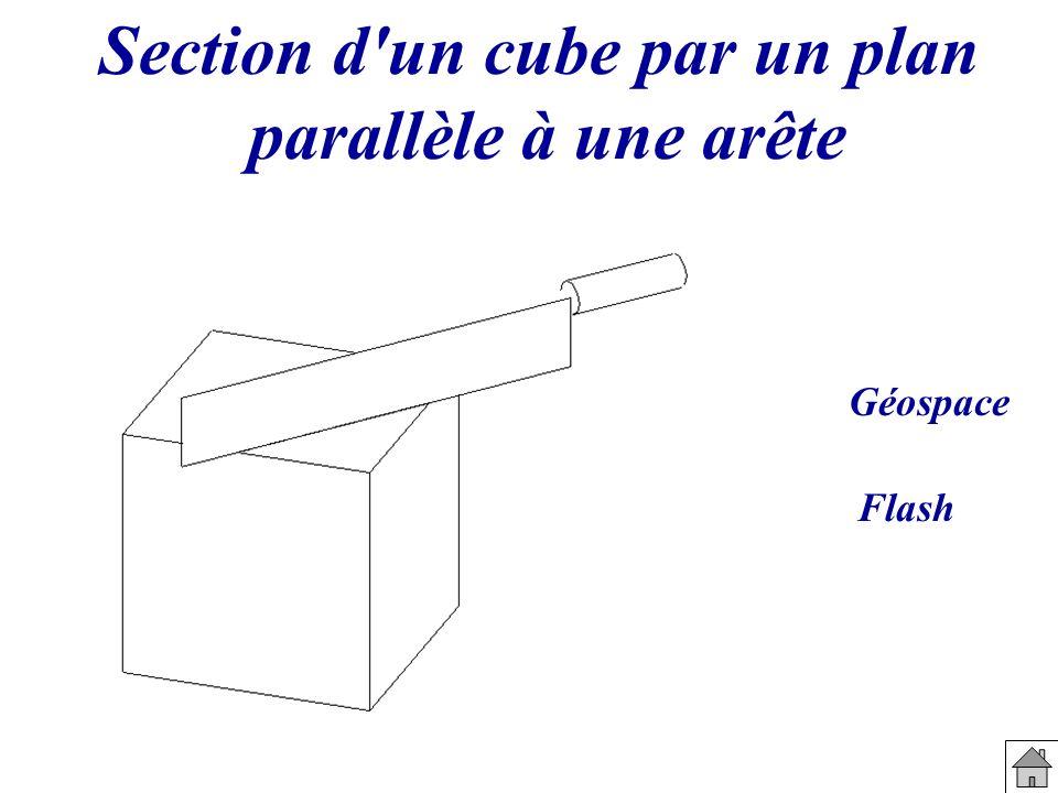 Section d'un cube par un plan parallèle à une arête Géospace Flash