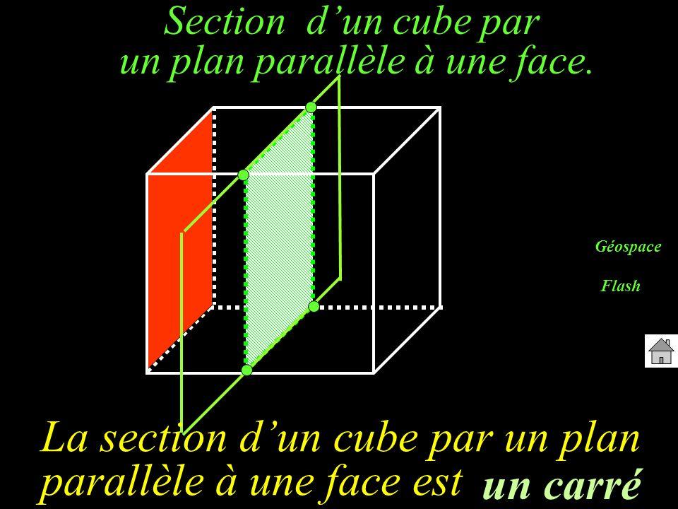 Section dun cube par un plan parallèle à une arête.
