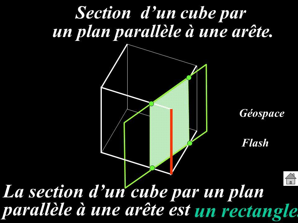 Section dun cube par un plan parallèle à une arête. La section dun cube par un plan parallèle à une arête est un rectangle. Géospace Flash