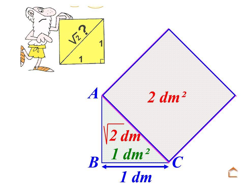 1 dm 1 dm² AB BC dm 2 2 dm²
