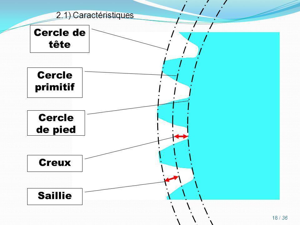 Cercle de tête Cercle primitif Cercle de pied Creux Saillie 2.1) Caractéristiques 18 / 36