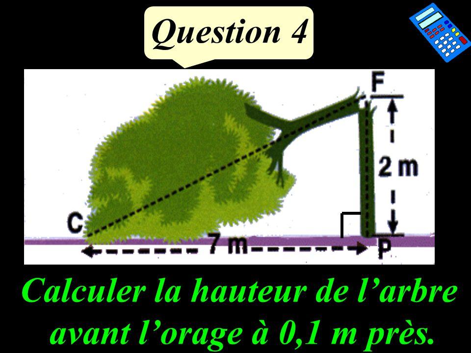 Question 4 Calculer la hauteur de larbre avant lorage à 0,1 m près.
