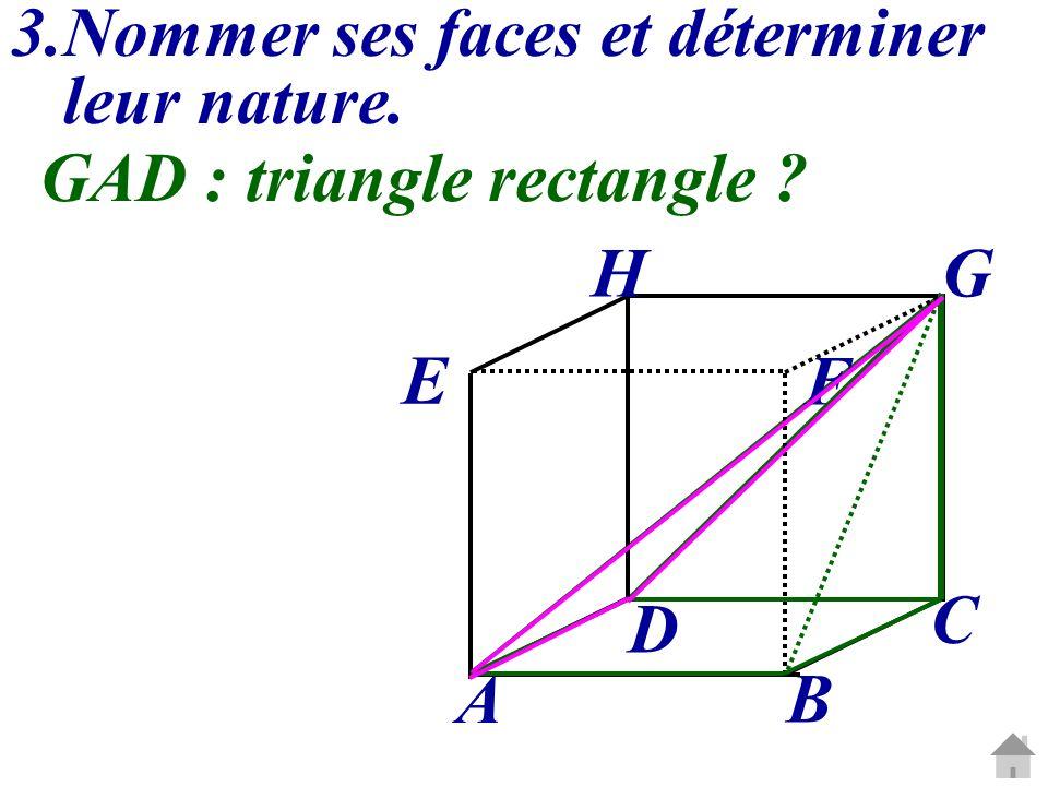 3.Nommer ses faces et déterminer leur nature. C G A B D E H F GAD :triangle rectangle ?