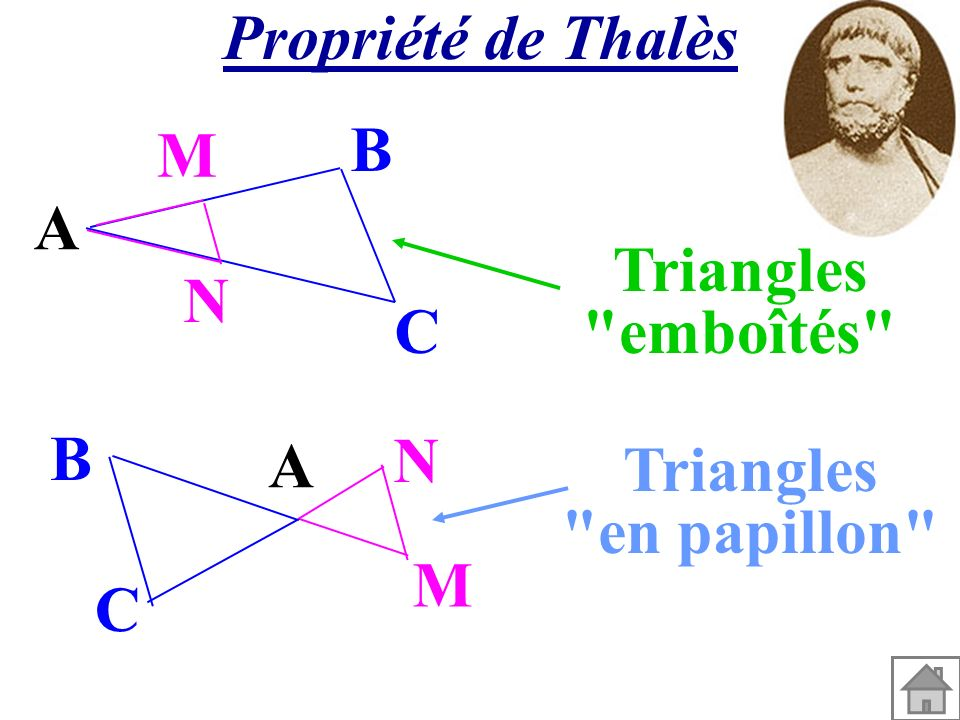 Propriété de Thalès A M N C B A M N C B Triangles emboîtés Triangles en papillon