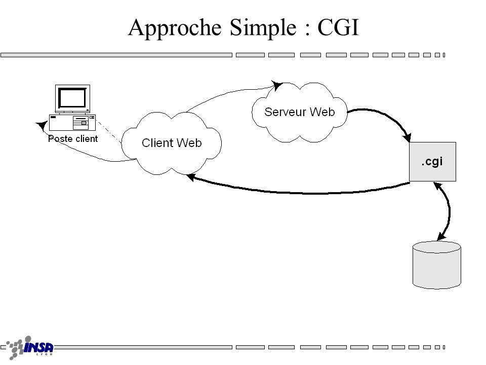 Execution de code Serveur –CGI –shtml –Serveur API –Servlets Clients –Plug-ins –Scripts Documentaires –Applets